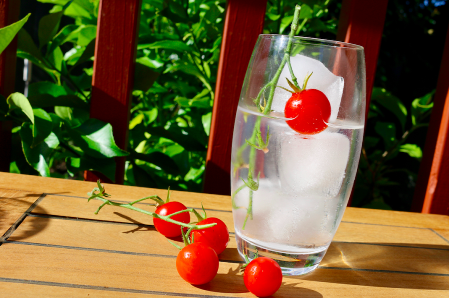 Abundance of tomatoes?…. add them to your gin!